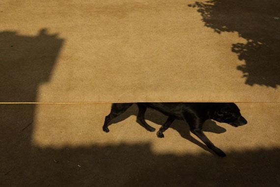 © Albarrán Cabrera, Kairos #4020, 2015