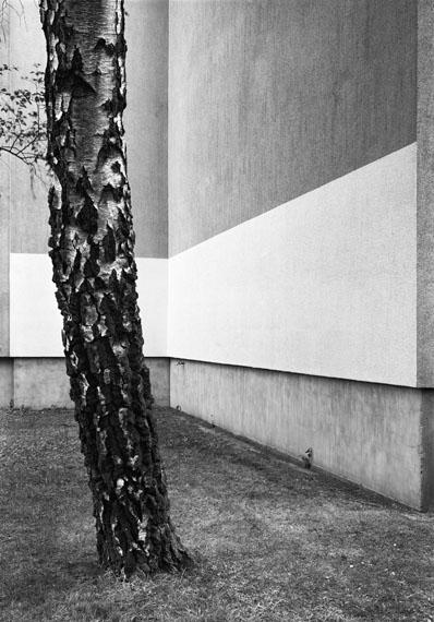 Lukas Hoffmann: Ohne Titel (Neue Strasse), 2017