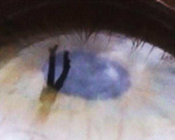 Melanie WioraEyescapes – By the Water, 2004Video Loop, 1:22 min. (Standbild)