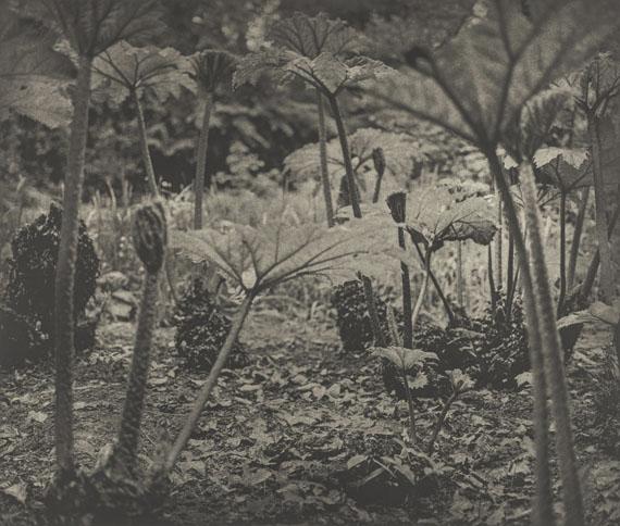 Jim Dine: Entrada Drive, 2001-2003© Jim Dine, VG Bild-Kunst, Bonn 2019courtesy Die Photographische Sammlung/SK Stiftung Kultur, Köln