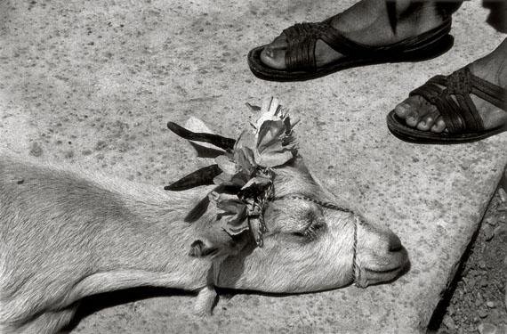 Baile del cabrito, La Mixteca, Oaxaca, México, 1992The Goat' Dance, La Mixteca, Oaxaca, Mexico, 1992 © Graciela Iturbide / Colecciones Fundación MAPFRE, 2019