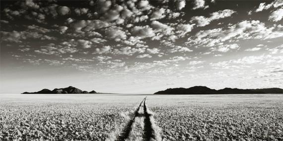CHRIS SIMPSON Wolwedans Namibia VII, 2007 Archival pigment print