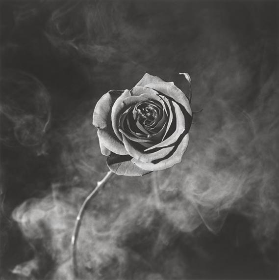Robert Mapplethorpe Rose with Smoke. 1985 Silbergelatineabzug, 1985.  38,6 × 38,6 cm (40,3 × 50,5 cm) (15 1⁄4 × 15 1⁄4 in. (15 7⁄8 × 19 7⁄8 in.)).  EUR 30.000–40.000