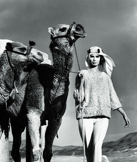 """F.C. Gundlach""""Gloria mit Dromedaren""""Baalbek, Libanon 1962"""