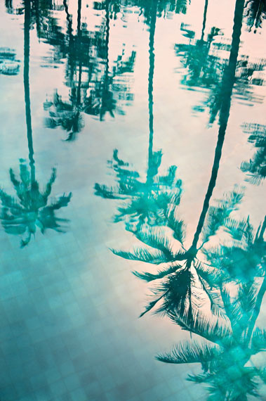 Philipp KeelPalms in a Pool, 2017222 x 154 cmImbue Print on Baryte PaperEdition 3 & 2 AP
