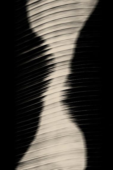 © Paul Cupido, Cabaret Nocturne, 2018