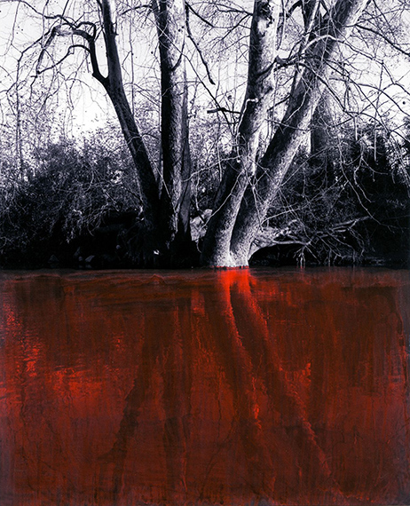 Choccolocco Creek, West Aniston, Alabama, 2012, from the project »Monsanto®: A Photographic Investigation«, © Mathieu Asselin