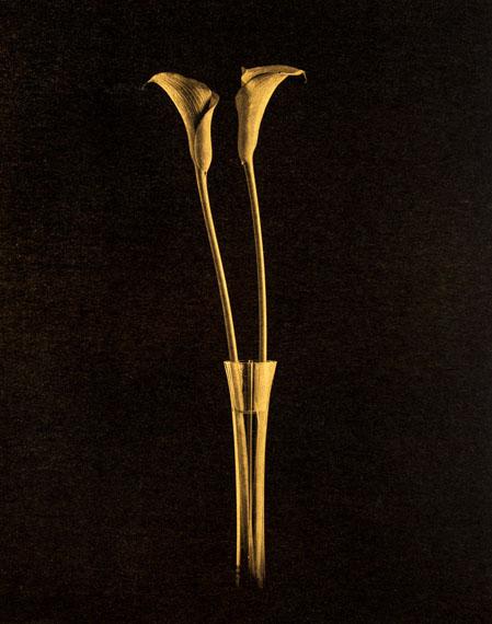 Gilles LorinCALLAPlatinum-palladium Abzug, Blattgold. 2017
