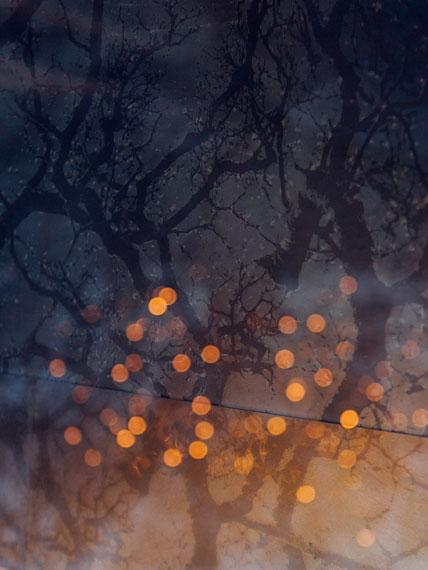 "Jewgeni Roppel: Sacred Trees, aus der Serie ""Mothar"", 2018 © Jewgeni Roppel"