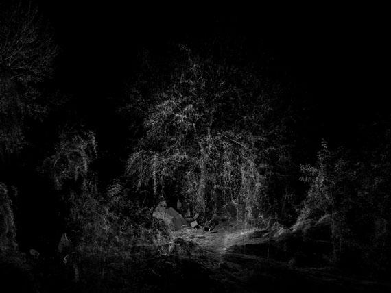 Claudius SchulzeAR2710-RL71211.18LiDAR scan of urban wilderness Berlin, 2018160 x 210 cm© Claudius Schulze, Courtesy the Artist / Galerie Robert Morat