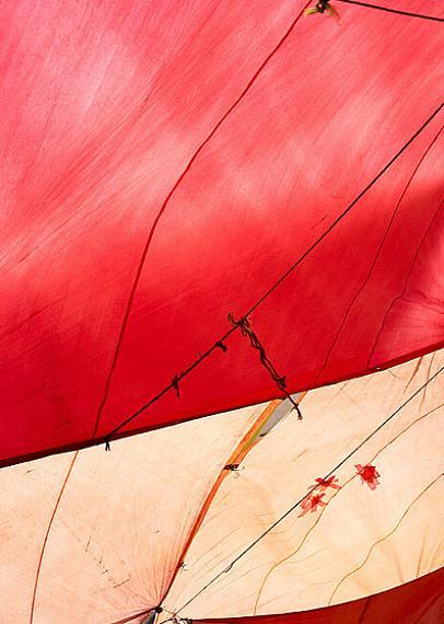 Flo Maak: Red, 2020, 140 x 100 cm