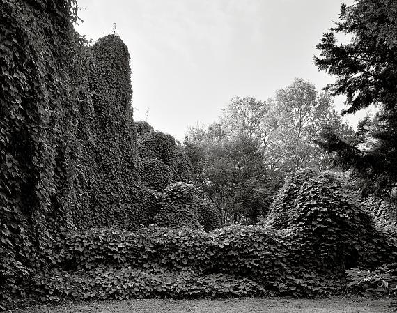 Lorenz Kienzle, aus der Serie Gutspark Karwe 2018