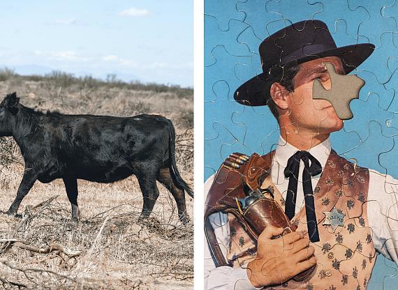 Ute Behrend: aus der Serie Cowboys, Kuh mit angeschnittenem Kopf & Cowboypuzzle, 2020 © Ute Behrend