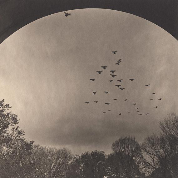 TAKESHI SHIKAMASilent Respiration of Forests: Central Park, 2014, 2005Platinum palladium print by Amansalto on Japan paperImage: 63,5 x 63,5 cm / Print: 76,5 x 76,5 cmCourtesy Galerie Lunn