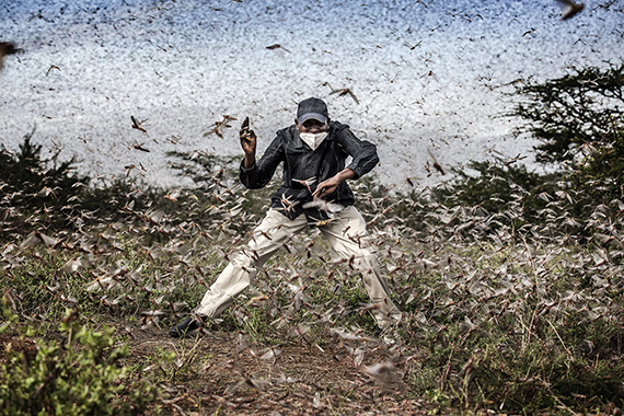 Luis TatoFighting Locust Invasion in East AfricaFor The Washington Post2021 Photo Contest, World Press Photo of the Year Nominee