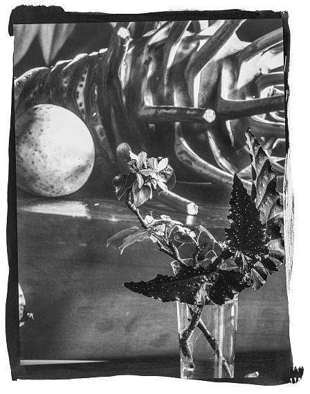 Vera MercerUntitledPlatinum Print, Omaha 2020© Vera Mercer