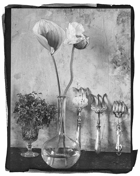 Vera MercerFlowers in vase Platinum Print, Paris 2021© Vera Mercer