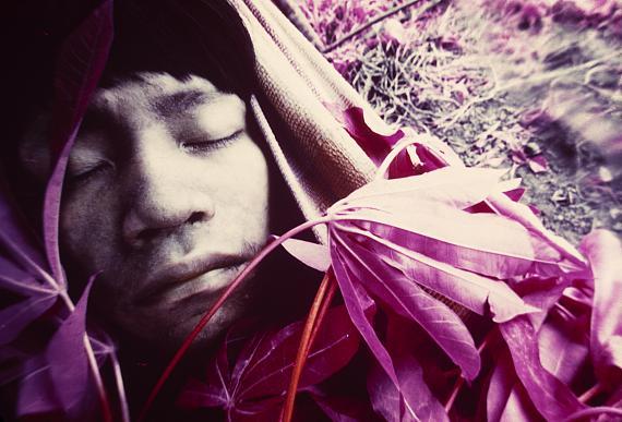 The Yanomami Struggle