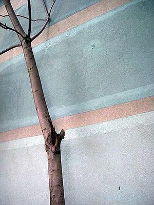 IM GARTEN - ZWILLING RECHTS, 2004