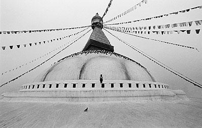 © Caroline Halley The Stupa and the Bird Nepal, 2001