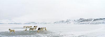 Uummannaq 2, 2007 © Tiina Itkonen courtesy Michael Hoppen Contemporary