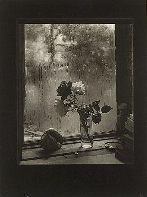 Josef SudekThe Last Rose, from the Rose series, 1956© Museum of Decorative Arts in Prague