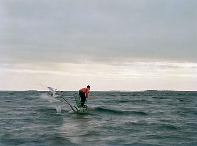 Waves, 2005Aus der Serie Sacred BirdLambda-Print auf Aluminium100x 137 cm, gerahmtAuflage 5+2ap