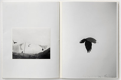 nevermore. 2008. Artist book. Ed of 25.