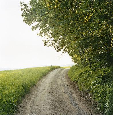 Weg,  Helfenberg-Dobring, 2006