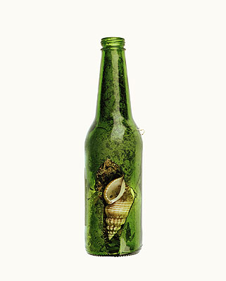 Green Bottlefrom The Summer of Us, 2009pigment print50 x 40 cmedition of 8 + 2 AP