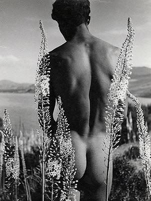 Herbert List, Arab with Flowers, Nude, 1935© Herbert List Bequest, Hamburg and Münchner Stadtmuseum