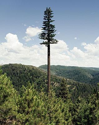 Robert Voit, Mono Lake, California, USAN38°47.400 W120°29.950Pigmentdruck bzw. C-Print, 200650 x 60 cm bzw. 125 x 155 cm© Robert Voit