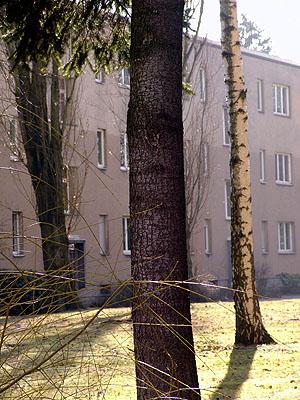 © Heidi SpeckerSiedlung2004aus: Im Garten120 x 90Digital Fine Art Print auf Hahnemühle Photo Rag