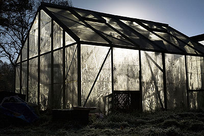 Leonie Purchas, The Greenhouse, from the series In the Shadow of Things, 2009 © Leonie Purchas