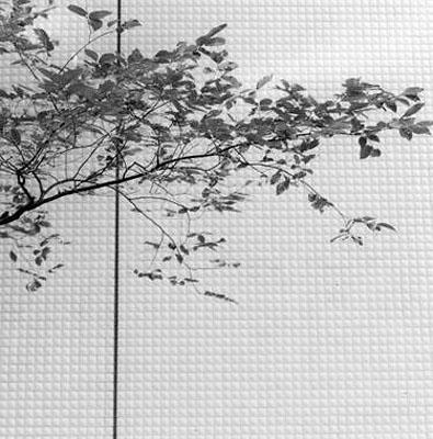 Nishidai, Japan, 2006 © Frauke Eigen