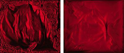 CASE 37, diptych, 2009incl. frame.: 63 x 71,5 x 3,5 cm each, Ilfochrome, Diasec, Glass, wooden American frame,Zarenhorn (musicinstrument) case; giftfrom Czar Alexander III. of Russia,Musicalinstrument museum, CastleKremsegg, Kremsmünster,Austria© Sinje Dillenkofer