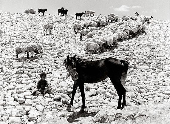 Carmel Plateau, Israel, 1953, © Izis Bidermanas; Lagny, 1959
