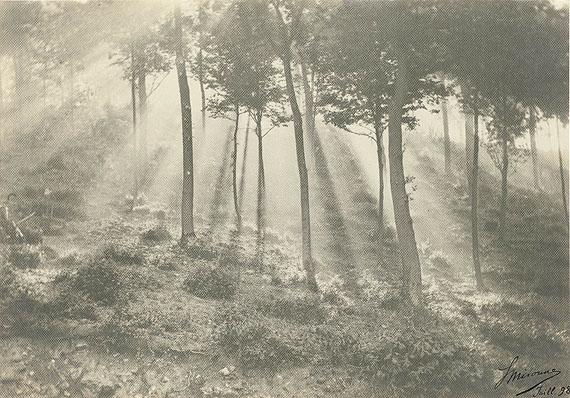 Léonard Misonne: Soleil et brouillard (Sonne und Nebel), 1898, Platindruck, Kupferstich-Kabinett, Staatliche Kunstsammlungen Dresden, Foto: Herbert Boswank