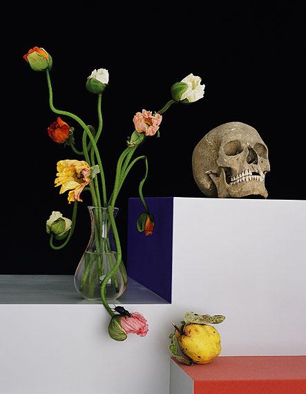 Shirana Shahbazi[Stilleben-33-2009]C-PrintGalerie Bob van Orsouw, Zürich© Shirana Shahbazi