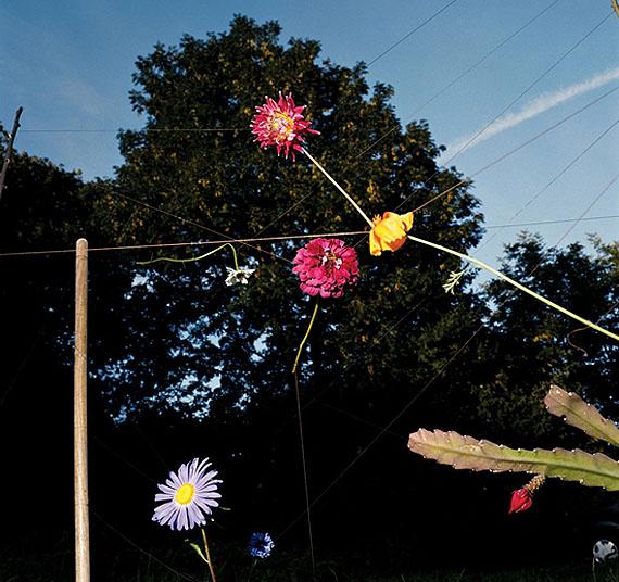 Collier SchorrArrangement #18 (Blumen), 200898,1 x 78,7 cmCopyright the artistCourtesy 303 Gallery, New York und Galerie Barbara Weiss, Berlin