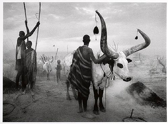 Sebastião SalgadoDinka Group at Pagarau Cattle Camp, 2006Gelatin silver printEstimate: $10,000-15,000