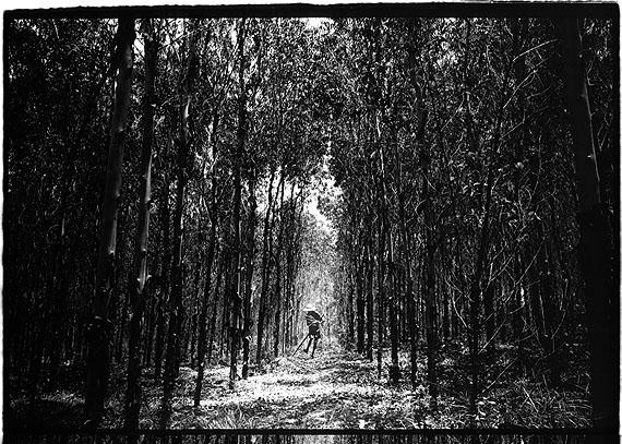 Kosuke OKAHARAWuchuan, Chine, 17 June 2007Tirage argentique sur papier baryté40 x 50 cm / 12 exemplaires50 x 60 cm / 10 exemplaires© Polka Galerie
