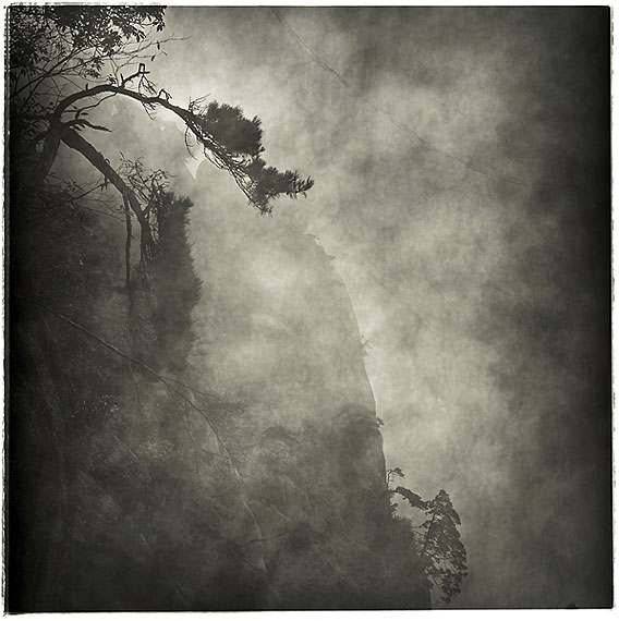 LU YANPENG