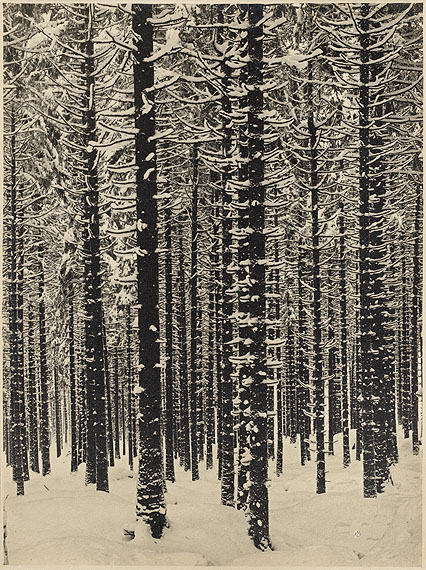 "Renger-Patzsch, Albert1897 Würzburg - 1966 Wamel""Gebirgsforst"". 1926. Vintage. Gelatin silver print14,000 – 18,000 €"