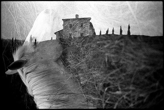© Machiel Botman