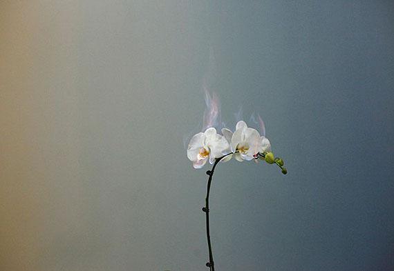 courtesy m97 gallery © jiang zhi 2011