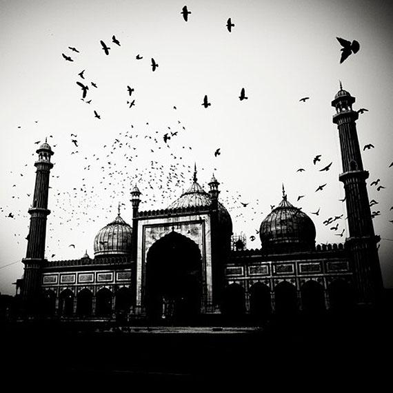 Mosque and Birds 2010 © Josef Hoflehner