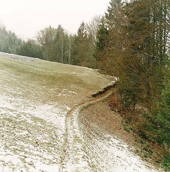 Bernhard Fuchs, Pfad, Helfenberg, 2004Sammlung Niedersächsische Sparkassenstiftung, Hannover© Bernhard Fuchs 2012