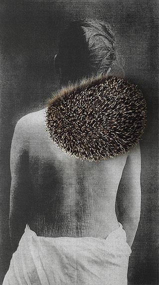 © Paula Muhr