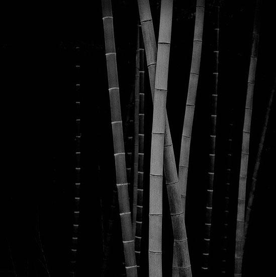 © Choi Byung Kwan